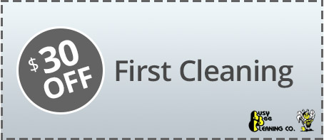 house cleaning specials coupon 1